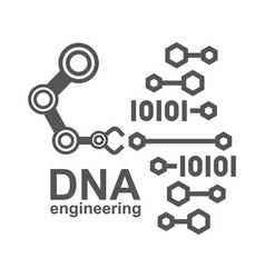 dna engineering creation synthetic vector image
