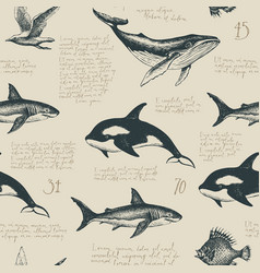 seamless pattern with hand-drawn fishes and text vector image