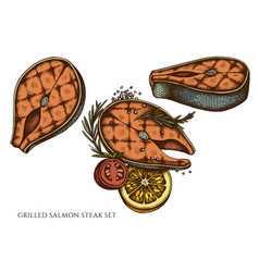 Set hand drawn colored grilled salmon vector