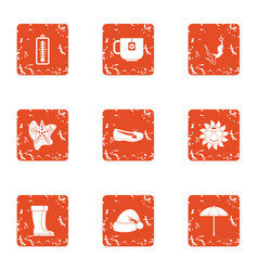 thaw icons set grunge style vector image