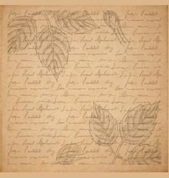 Vintage old paper texture engraved slyle rose vector