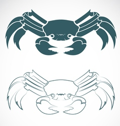 image of an crab vector image vector image