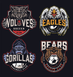colorful sports clubs emblems vector image