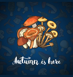 hand drawn mushrooms background vector image