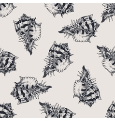 Hand drawn vintage exotic shell abstract pattern vector image