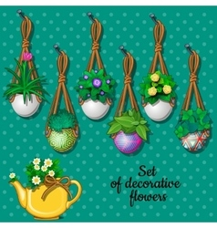 Set flowers in hanging pots and kettle 7 elements vector