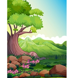 A big tree at the forest vector image