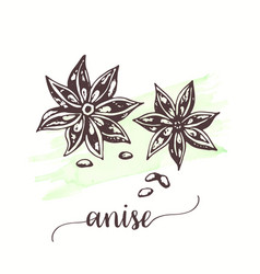 Anise for tags cards vector