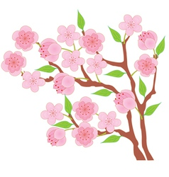 Blossom peach vector