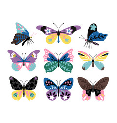 color drawing butterfly set vector image