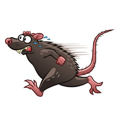 Escaping rat vector