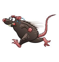 Escaping rat vector