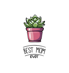 happy mother s day greeting card with succulent vector image