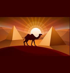 landscape desert - camel vector image