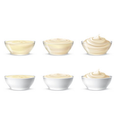 mayonnaise sour cream vector image