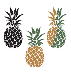 Pineapple fruit set vector