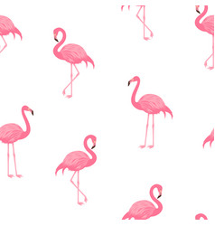 Pink flamingos pattern vector
