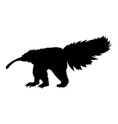 Silhouette of anteater vector
