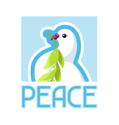 white dove peace bears olive branch vector image