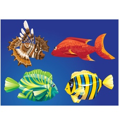 Red Sea Fishes vector image