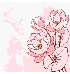Abstract water lily flowers vector