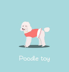 Charming poodle toy pet design vector