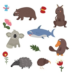 Different animals of australia vector