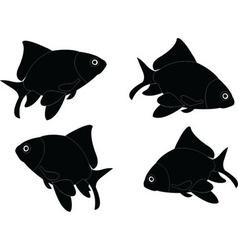 Goldfish - vector