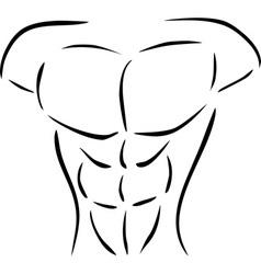 Muscular body vector