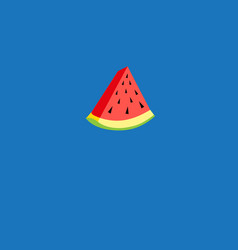 slice watermelon vector image