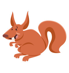 squirrel cartoon character vector image