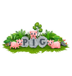 three little pig playing at garden vector image