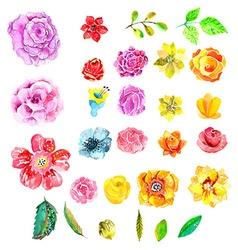 Beautiful Watercolor flower set vector image vector image