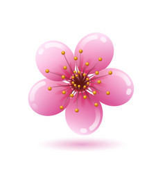 beautiful pink sakura flower icon on white vector image