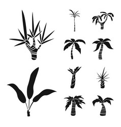 isolated object travel and ecology icon set of vector image
