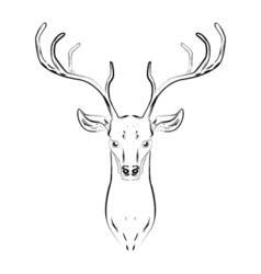 Male deer with horns head vector