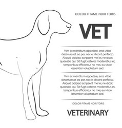 veterinary poster design with line dog vector image