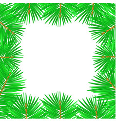 christmas tree branches for vector image
