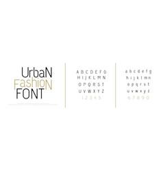 elegant alphabet letters font classic custom vector image