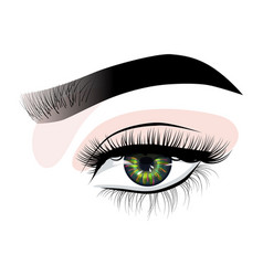 Hand-drawn womans sexy luxurious eye with vector
