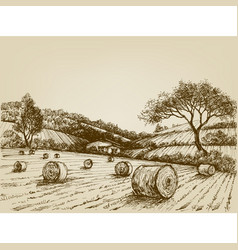 Harvest landscape farm field and hay bales vector