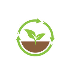 sprout plant icon design template isolated vector image