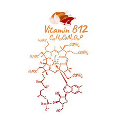 Vitamin b12 with food label and icon chemical vector