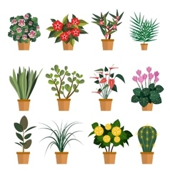 set of flowers with different vector image