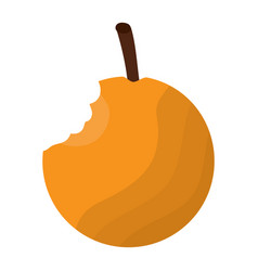 orange fresh food bitted fruit vector image