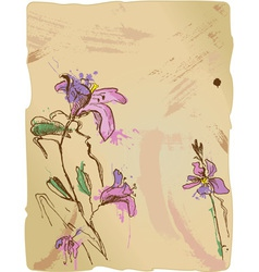 Aquarelle sketch of iris flowers vector