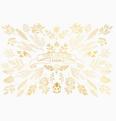 bloom collection vector image