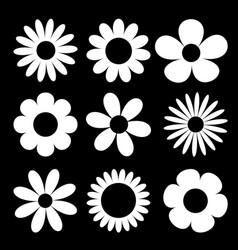 camomile big set white daisy chamomile silhouette vector image