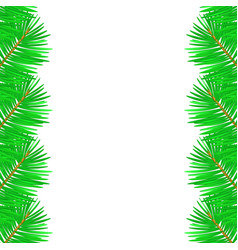 christmas tree branches on vector image