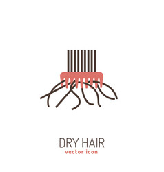 Dry hair icon vector